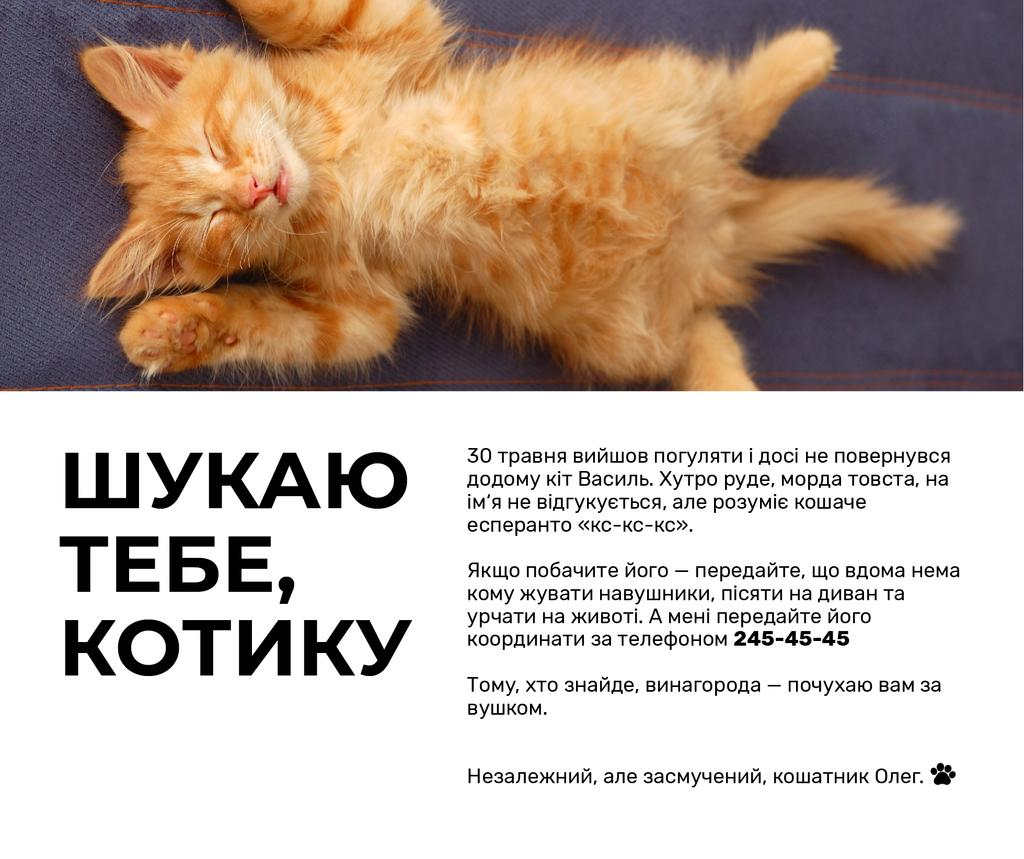 Cute Red Fluffy Kitten Sleeping | Facebook Post Template — Створити дизайн