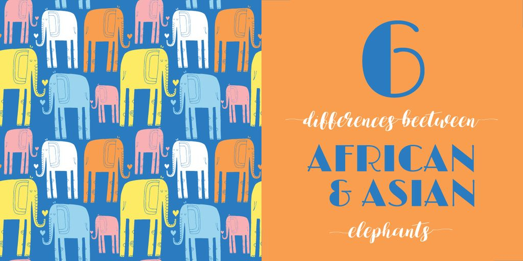 differences between african and asian elephants — Crea un design