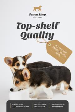 Dog Food Ad Cute Corgi Puppies