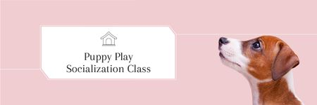 Plantilla de diseño de Puppy play socialization class Email header