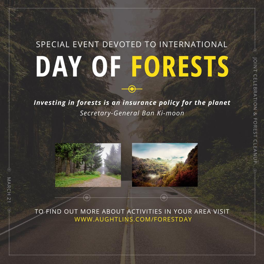 International Day of Forests Event Forest Road View — Modelo de projeto