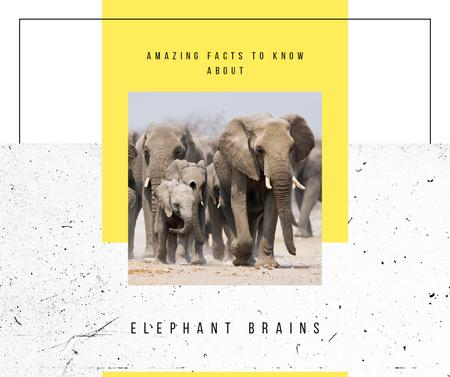 Plantilla de diseño de Wild elephants in natural habitat Facebook