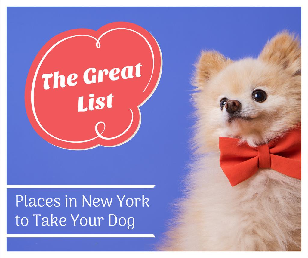 Modèle de visuel Pet Friendly Places in New York with cute Dog - Facebook