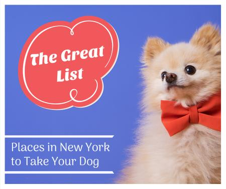 Pet Friendly Places in New York with cute Dog Facebook Modelo de Design