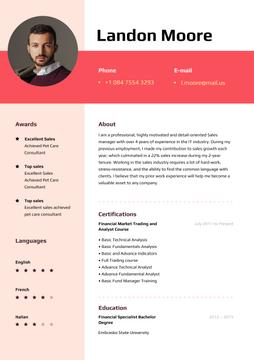 Sale Executive professional profile