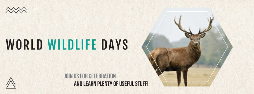 World wildlife day Announcement — Modelo de projeto