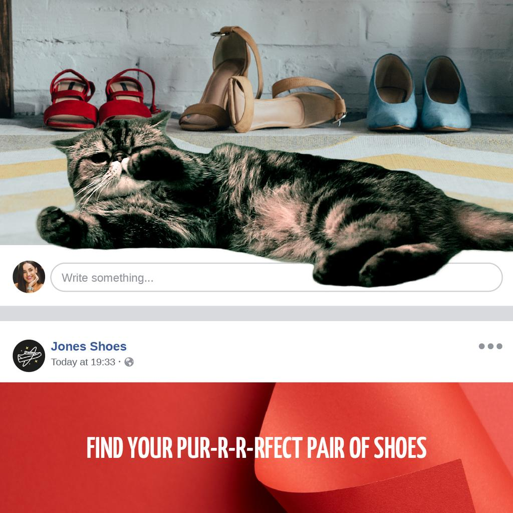 Fashion Sale Cat with Stylish Shoes — Crear un diseño
