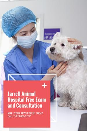 Dog in Animal Hospital Pinterest Modelo de Design
