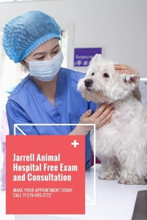 Modèle de visuel Dog in Animal Hospital - Pinterest