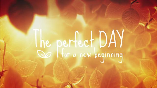 Perfect Day Quote Golden Leaves in Sunlight Full HD video Design Template