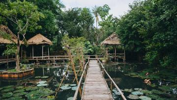 Tropical Lake with thatched Arbors