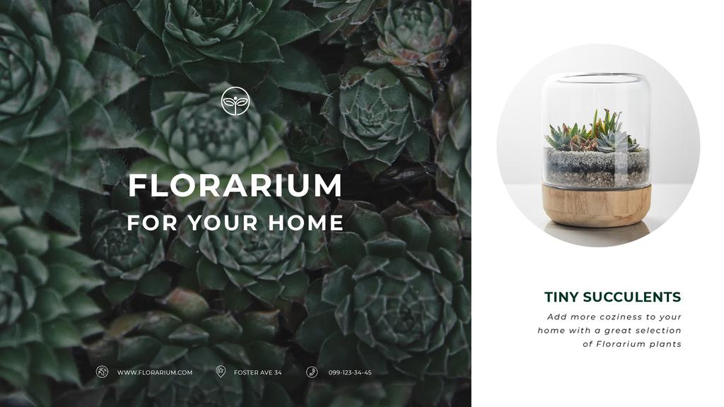 Floral Shop Ad Succulent Plants in Green — Crea un design