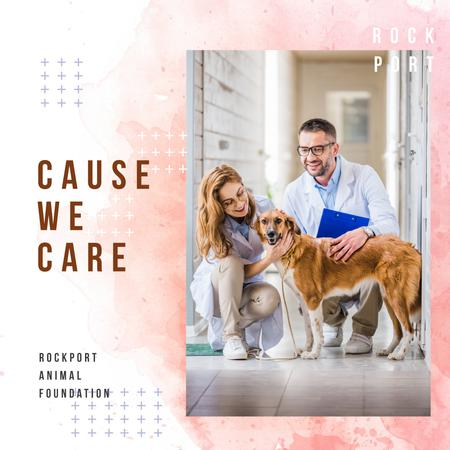 Ontwerpsjabloon van Instagram AD van Vet taking care of Dog in Clinic