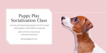Puppy socialization class with Dog in pink Image Modelo de Design