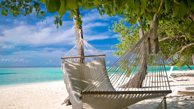 Hammock at tropical Sea Coast Zoom Background Modelo de Design