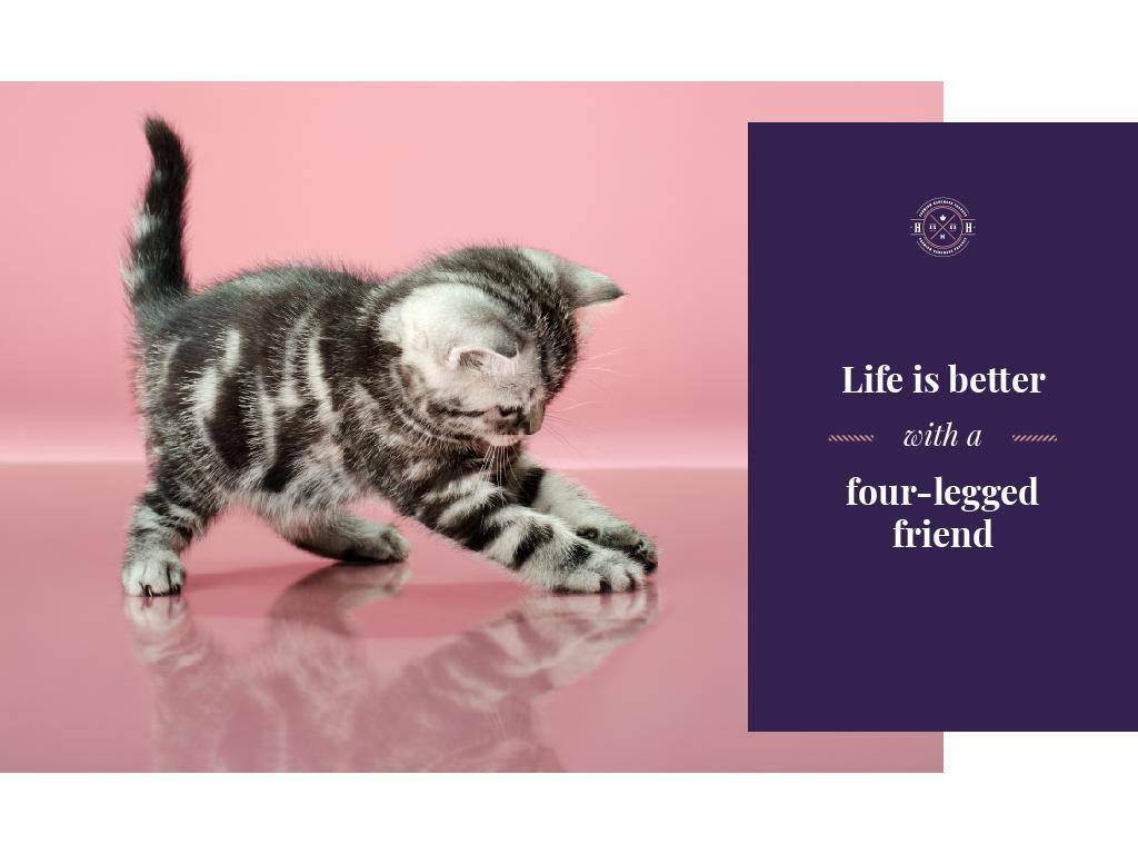 Pets Inspiration Quote Cute Kitten Playing —デザインを作成する