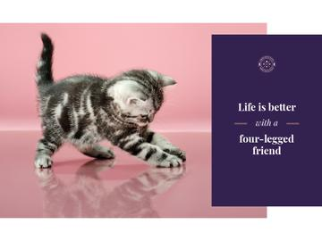 Pets Inspiration Quote Cute Kitten Playing | Presentation Template