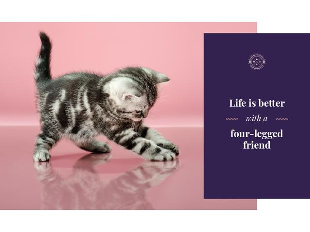 Pets Inspiration Quote Cute Kitten Playing Presentation Design Template