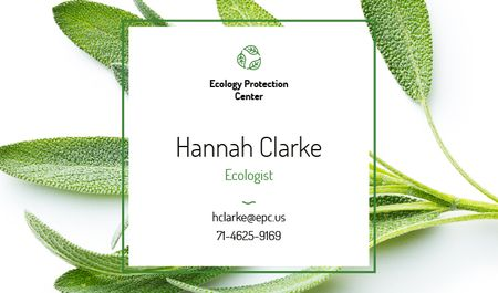 Ecologist Services with Healthy Green Herb Business card Modelo de Design