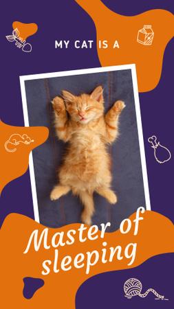 Plantilla de diseño de Cute sleeping kitten Instagram Story