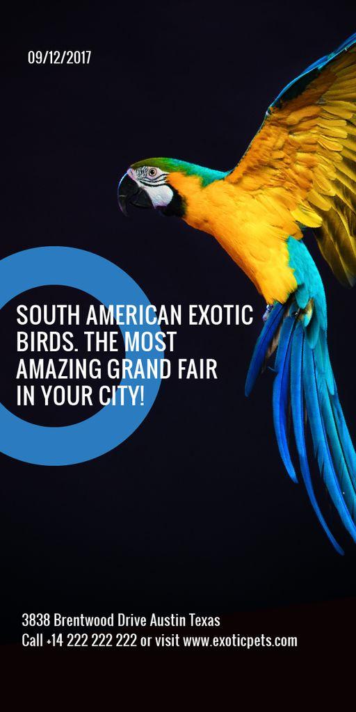 South American exotic birds shop — Modelo de projeto