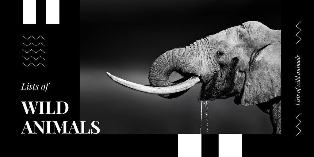 Wild elephant portrait — Modelo de projeto