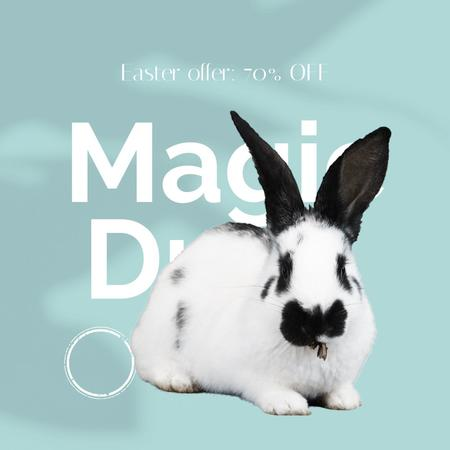 Magic Drop Offer with cute Easter Bunny Animated Post – шаблон для дизайна