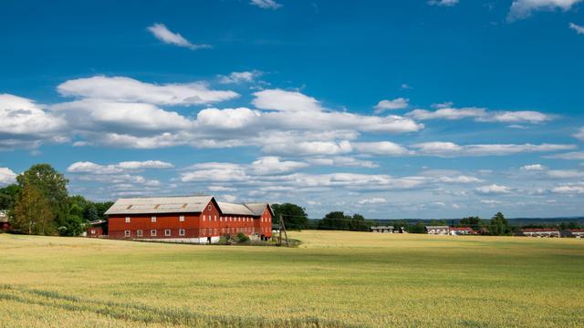Designvorlage Landscape of small Village in the field für Zoom Background