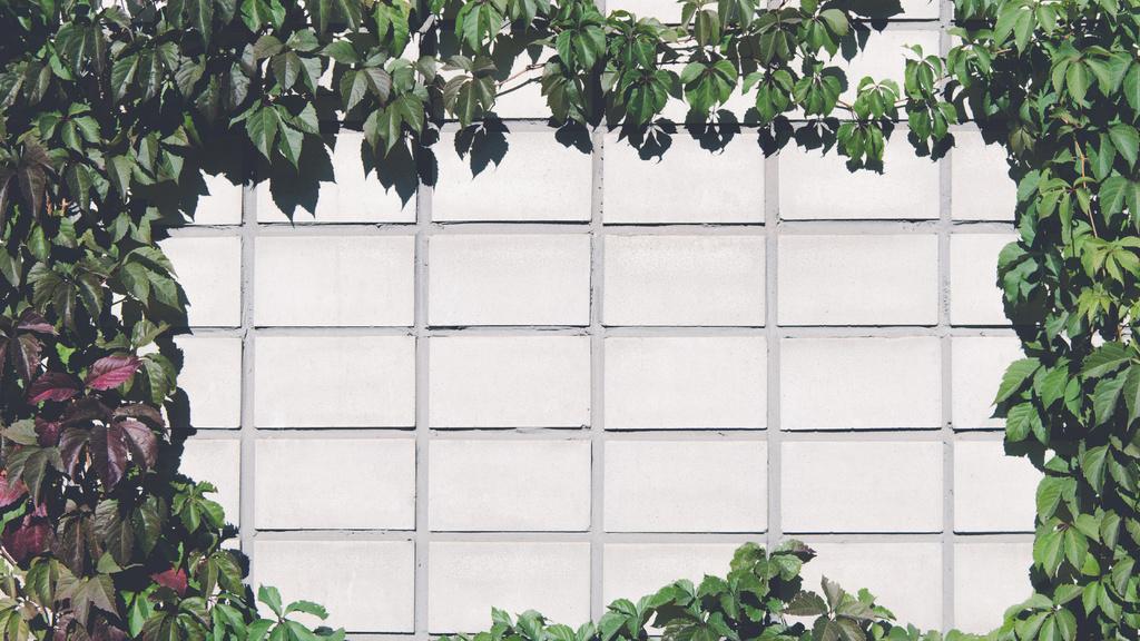 Brick Wall covered with beautiful Ivy — Создать дизайн
