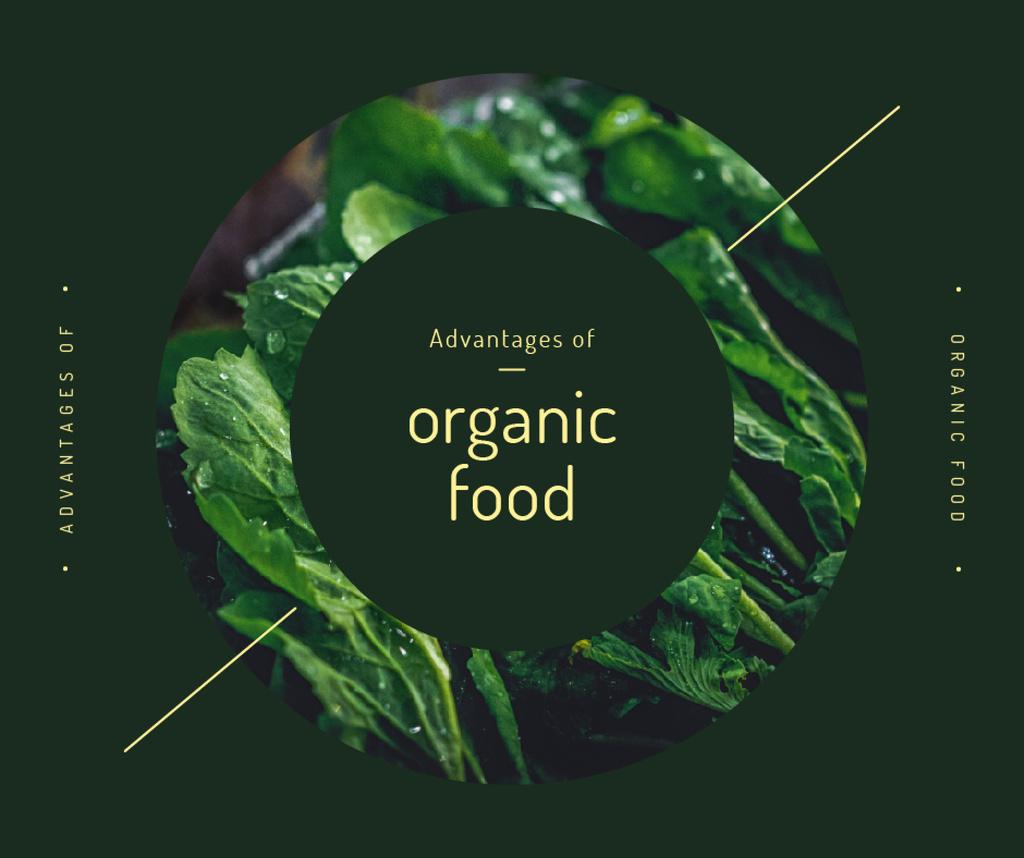 Healthy green herbs frame — Modelo de projeto