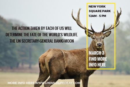 Ontwerpsjabloon van Gift Certificate van New York Square Park with Deer