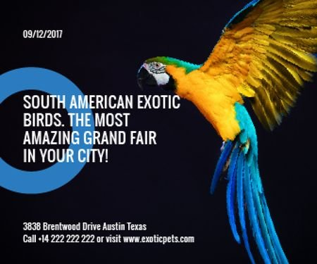 South American exotic birds fair Large Rectangle Tasarım Şablonu
