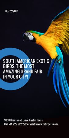Plantilla de diseño de Exotic Birds fair Blue Macaw Parrot Graphic