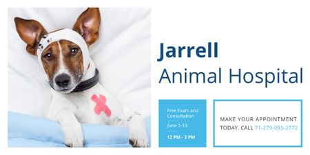 Animal Hospital Ad with Cute injured Dog Image Modelo de Design