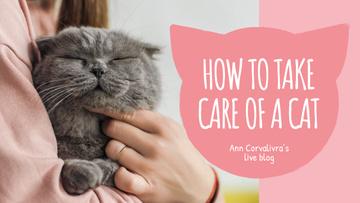 Pet Care Guide Woman Hugging Cat