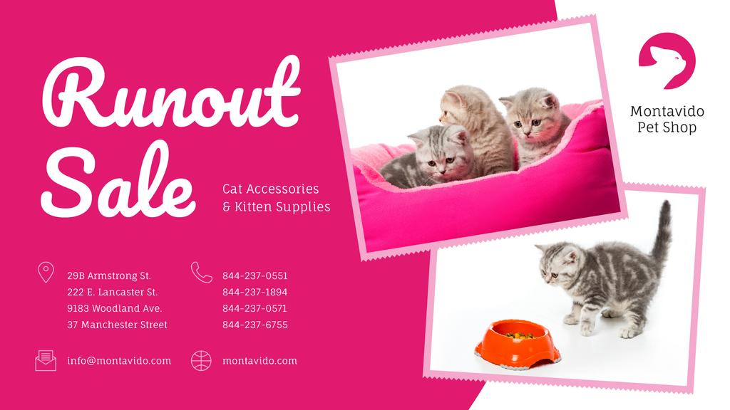 Pet Shop Sale Funny Kittens in Pink — Crea un design