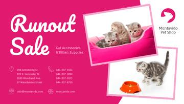 Pet Shop Sale Funny Kittens in Pink