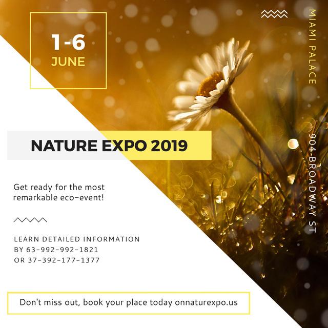 Modèle de visuel Nature Expo announcement Blooming Daisy Flower - Instagram AD