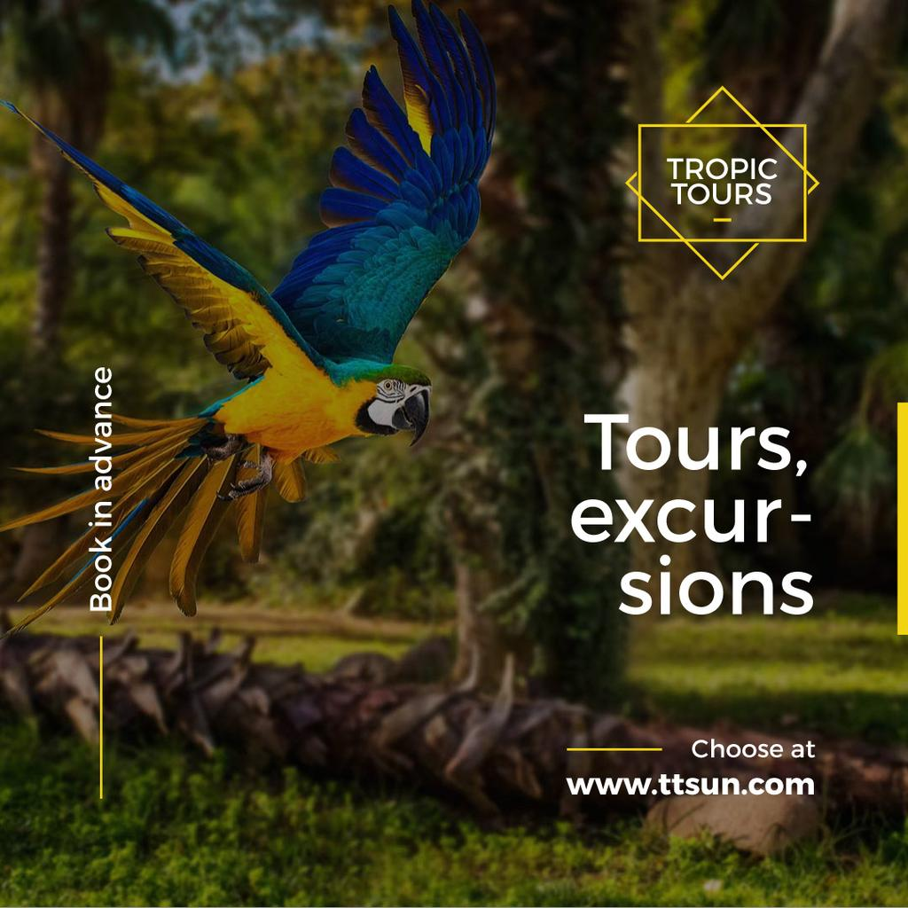 Exotic Tours Offer Parrot Flying in Forest | Instagram Ad Template — Modelo de projeto