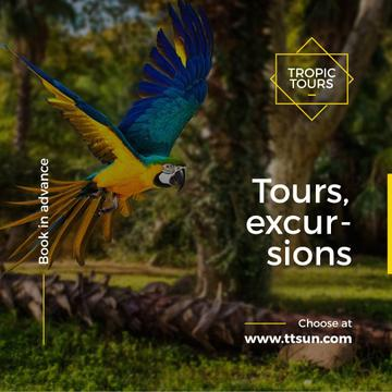 Exotic Tours Offer Parrot Flying in Forest | Instagram Ad Template