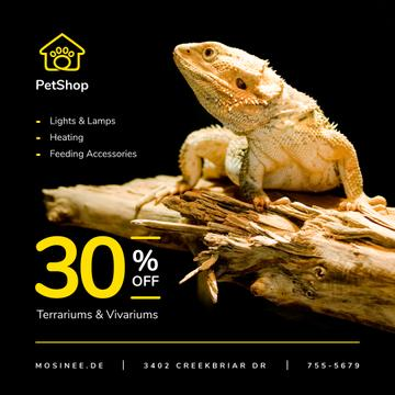 Pet Shop Offer Lizard on a Log | Instagram Post Template