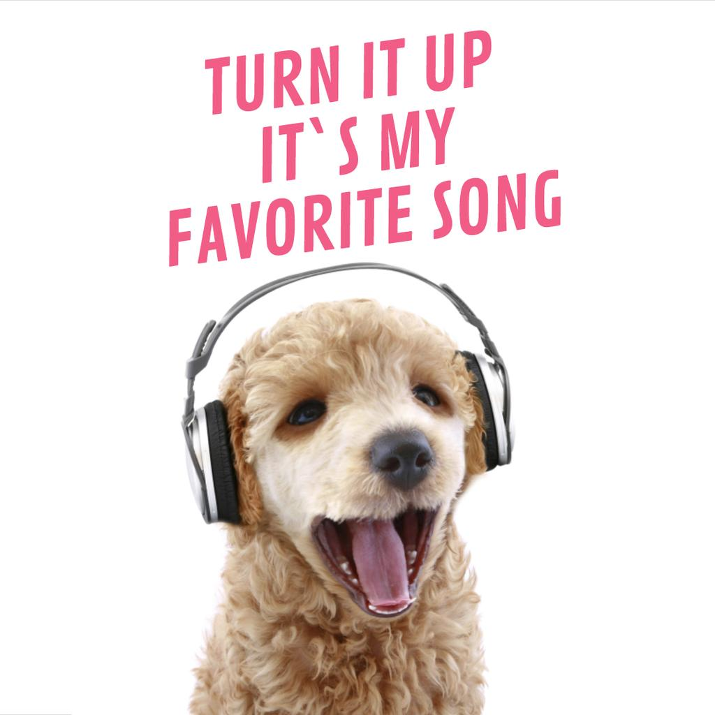 Funny dog with bouncing head listening to music — Modelo de projeto