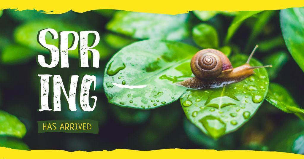Snail on green leaf — Modelo de projeto