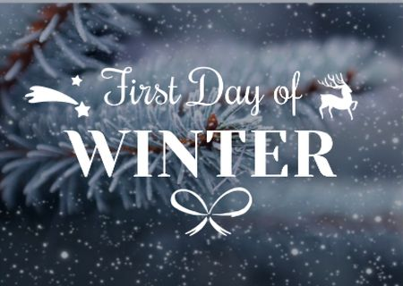 First day of winter with frozen fir tree branch Postcard Modelo de Design