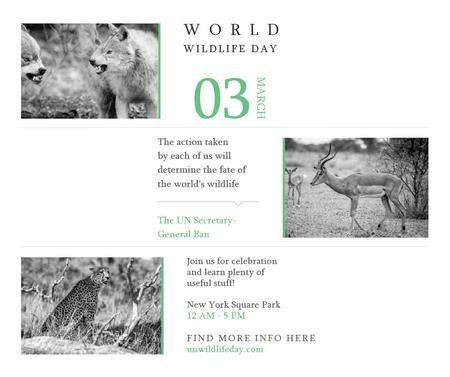 World Wildlife Day Animals in Natural Habitat Facebook Modelo de Design