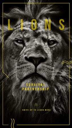 Plantilla de diseño de Survival Partnershop with Wild male lion Instagram Story