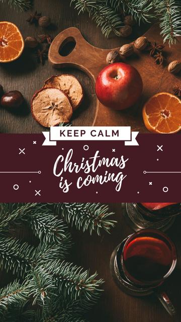 Cooking Christmas mulled wine Instagram Story – шаблон для дизайну