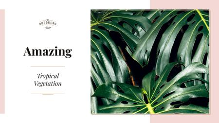 Plantilla de diseño de Tropical vegetation with Green Leaves Presentation Wide