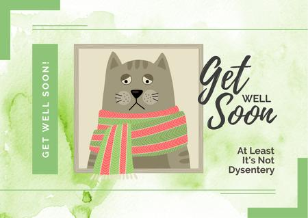 Sad Sick grey Cat Postcard Design Template