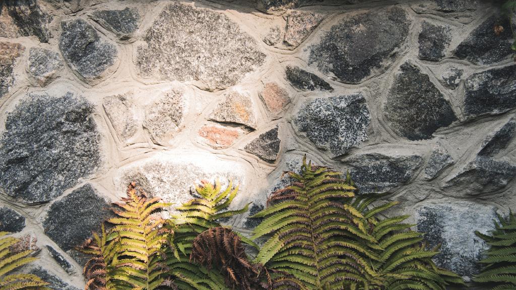 Stone wall with fern leaves — ein Design erstellen